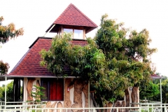 treehouse outer